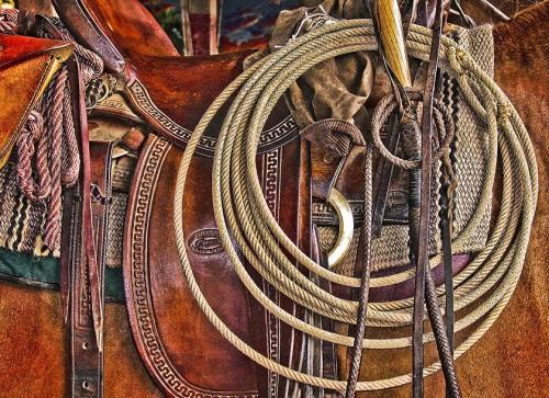 New And Used Saddles West Of Ole England Stuart Florida